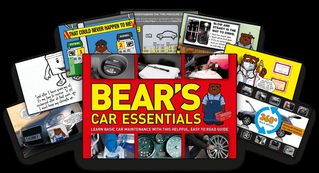 bear book cover fan layout